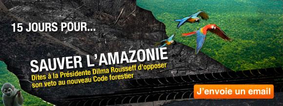 Demandez à Dilma Rousseff d'opposer son veto pour sauver l'Amazonie